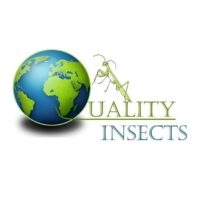 Quality insects