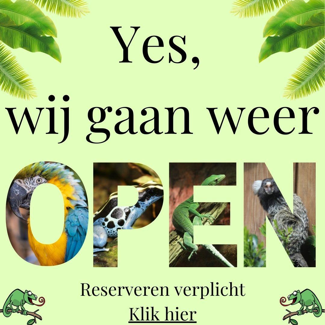 Weer open (1)