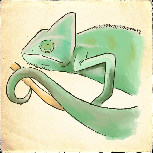 Reptielen afbeelding
