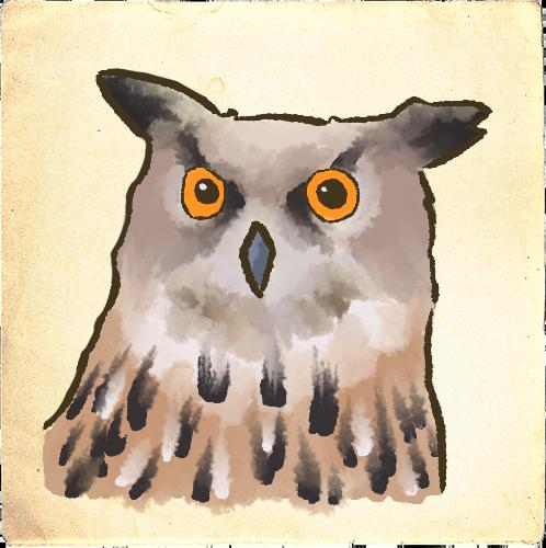 Vogels afbeelding