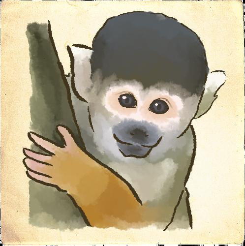 Zoogdieren afbeelding